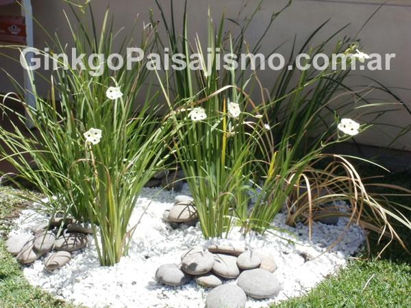 Ginkgo paisajismo jardines de bajo mantenimiento la for Jardines con poco mantenimiento
